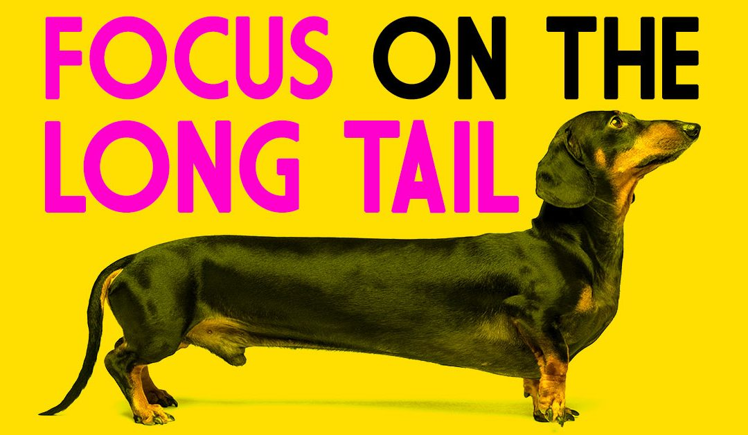 Want To Be Successful? Focus On The Long Tail.