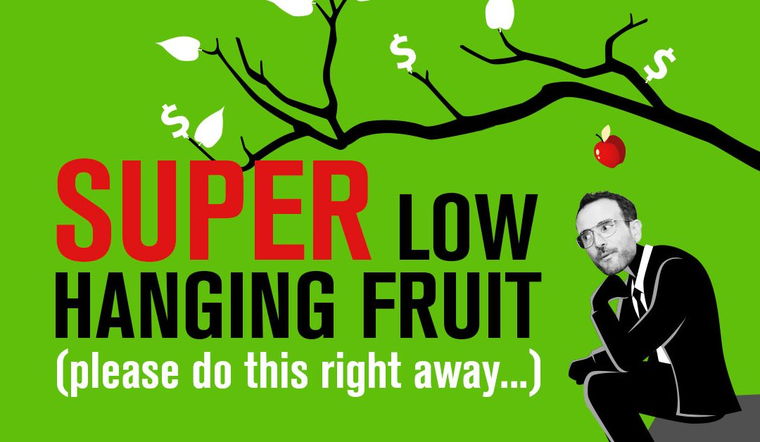 Super Low-Hanging Fruit (Please Do This Right Away)…